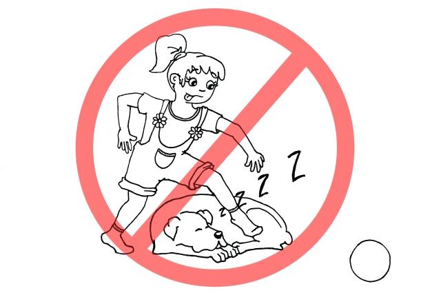 Kolorowanka - nie przeszkadzaj psu podczas snu
