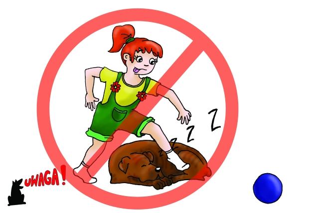 Nie przeszkadzaj psu podczas snu
